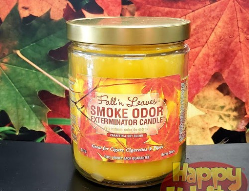 Odor Eliminator Candle Cinnamon